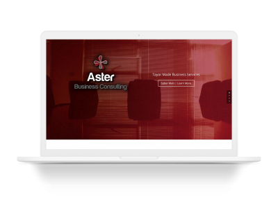 Aster Business Consulting
